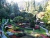 Most viewed butchart-gardens-1.jpg